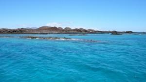 Reunión Plan Fuerteventura 2014 M.Cedenilla.  (77)